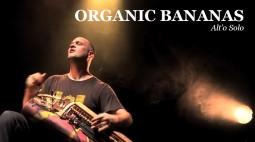 live_organic-bananas